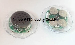 Toy Sound Chip, Sound Module, Waterproof Sound Module pictures & photos