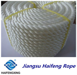 24mm Thin Rope Quality Certification Mixed Batch Price Is Preferential pictures & photos