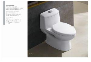 Sanitary One Piece Tall White Ceramic Toilet Bowl Toilet pictures & photos