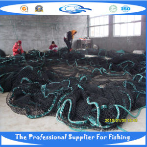 PE Knotless Fish Net (SDC17848_) pictures & photos