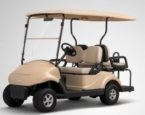 4 Wheel Electric Golf Buggies for Cheap Personal Transporter pictures & photos