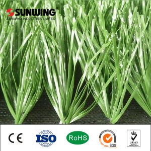Soccer Carpet Lawn Artificial Grass for Soccer pictures & photos