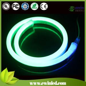 Digital RGB 14*26mm 24V LED Xmas Flexible Neon Light pictures & photos