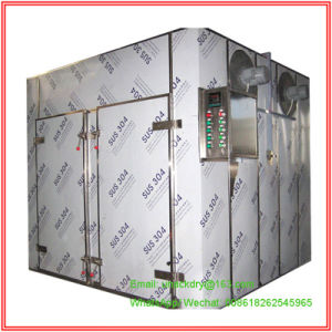 Hot Air Circulation Drying Oven for Herb/ Herb Roots with Soncap Certificate pictures & photos