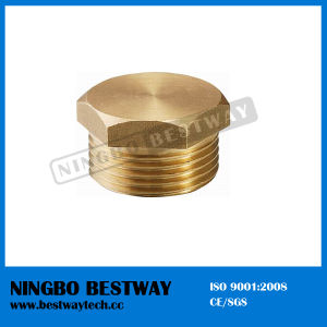 Brass Pipe Fitting Manufacturer (BW-632) pictures & photos