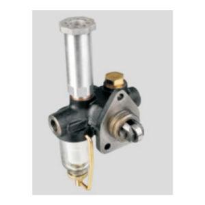 Fuel Pre-Supply Pump 0440008999 pictures & photos