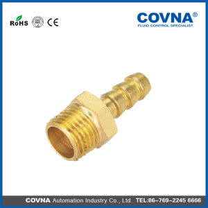 Bg Series of Pipe Fittings Teeth Brass Fittings pictures & photos