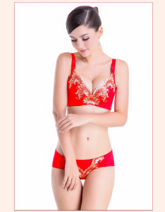 Wholesale Accept Supernumerary Breast Adjustable Push up Bra Set