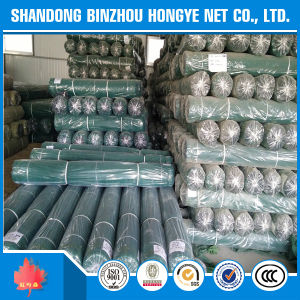 High Quality HDPE/PE Construction Safety Net with Boarders and Eyelets with Good Price pictures & photos
