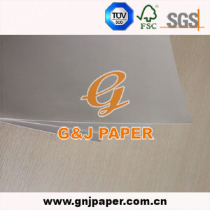 Any Size White Testliner Paper for Africa Market pictures & photos