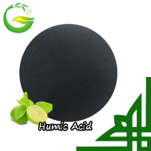 Water Soluble 70% Humic Acid Powder pictures & photos