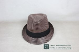 Paper Straw Hat (XH-PA2104) pictures & photos