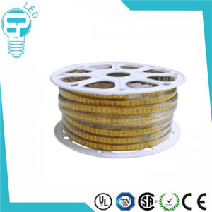 100m /50m Long AC 220V LED Strip 5050 / 3528 Smds Strip Light pictures & photos