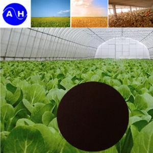 EDDHA Fe Na O-O 4.8 Fertilizer pictures & photos