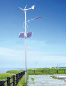 Solar-Wind Hybrid Street Lights pictures & photos