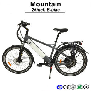 E Bicycle Side Pull Internal Lithium Battery E-Bike 36-48V 500W Electric Bicycle Electric Bicycle (TDE11Z) pictures & photos
