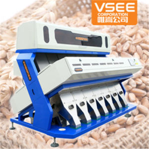Vsee Wheat Color Sorting Machine with 5000+Pixel pictures & photos