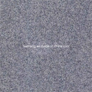 Chinese Silver Grey Granite G601 pictures & photos