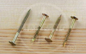 Big Cap Stainless Steel Nail pictures & photos