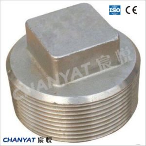 ASME B16.11 Stainless Steel Forged Fitting Plug A182 (F348H, F321H, F20) pictures & photos