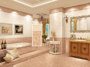 Simple Style Decorate Wall Ceramics Tile pictures & photos