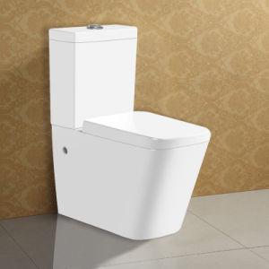 Ceramic Watermark Two Piece Toilet pictures & photos