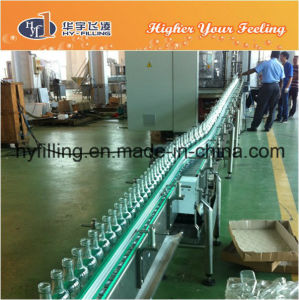 Glass Bottled Juice Belt Conveyor pictures & photos