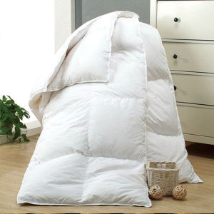 Export Hight Quality Luxury Duck Down Quilt pictures & photos