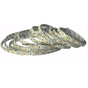 12V LED Strips Light 60LED SMD5050 Ww/Nw/B pictures & photos