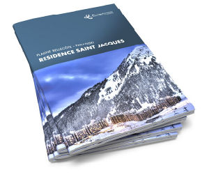 Customerized Booklet Printing Service (jhy-168)
