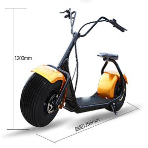 YAMAHA Electric Bicycle of Similar Product Electric Scooter 1000W pictures & photos