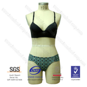 Wholesale Strap Lycra Bikini Two Piece Swimwear pictures & photos