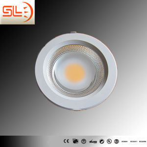 COB Chips LED Down Light with CE EMC pictures & photos
