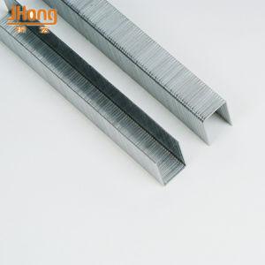 Penumatic Galvanized 10j Series Staples pictures & photos