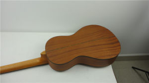 BV/SGS Certificate Supplier---China Aiersi Wooden Body Parlor Style Resonator Guitar pictures & photos