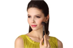 Hot Sell Cosmetic Natural Hair Blush Brush pictures & photos