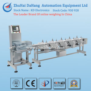 Seafood Weight Sorter/Conveyor Checkweigher pictures & photos