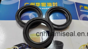 Oil Seal Tc. Tb, Tcn, Aw3055h (KFM) pictures & photos