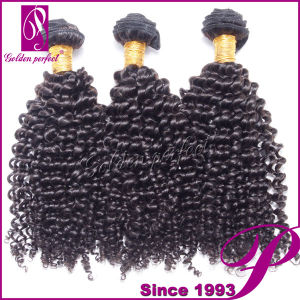 Cheap Kinky Curly Virgin Hair, Wholesale Brazilian Hair in Mozambique