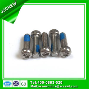 Tamper-Resistant Pan Head Stainless Steel Screw pictures & photos