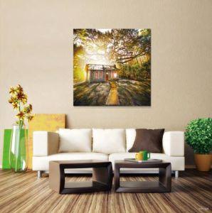 Factory Decorative Modern Art pictures & photos