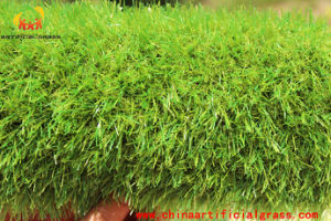 Removable Olive Landscape Synthetic Turf Withour Heavy Metals pictures & photos