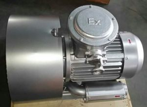 CE Approved Explosion-Proof Atex Ring Blower for Chemical Industry pictures & photos
