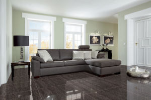 Double Loading Porcelain Floor Tiles with 600*600 mm (AJG619) pictures & photos