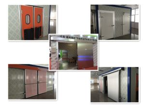 Stainless Steel Self-Return Swing Door Colorful with Glass Window pictures & photos