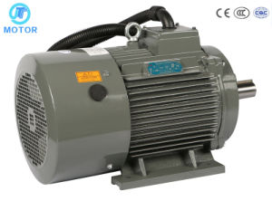 IP55 Y Series Three Phase Electric Motor / Engine Factory Pricesie2/Ye2 Series High Quality Three Phase AC Electric Motors0.55kw ~ 315kw pictures & photos