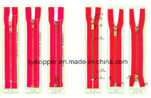 Metal Zipper for Clothing/Garment/Shoes/Bag/Jeans (3#/4#/5#/8#/10# Y Teeth Type)