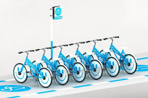 Public Bike-The Intelligent Campus Public System pictures & photos
