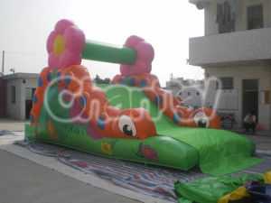 Inflatable Dry Slide for Amusement Climbing Mountain Chsl226 pictures & photos