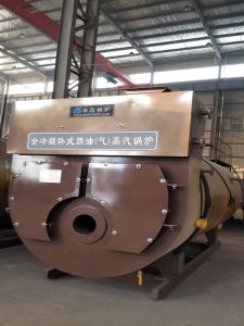 Oil or Gas Condensing Steam Boiler pictures & photos